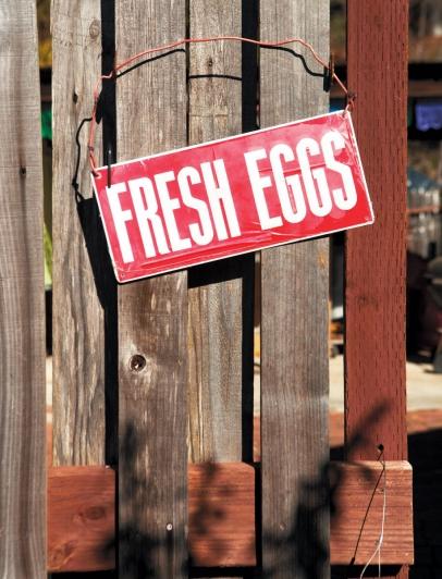 'Fresh Eggs' sign