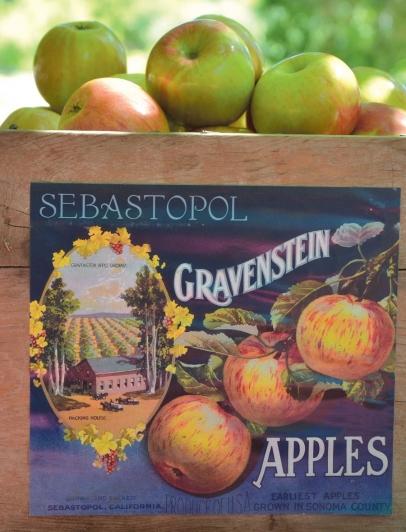 Sebastopol's Community Apple Press