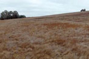 Landscape of Carbon Farming