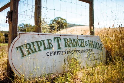 Triple T Ranch and Farm