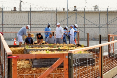 Inmates participate in Insight Garden Program