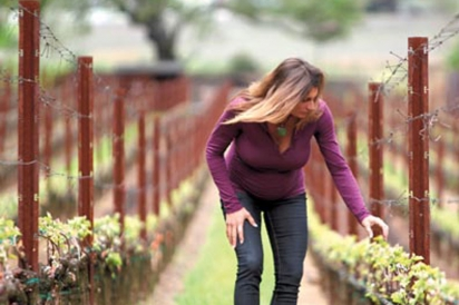 Winemaker Nicole Abiouness