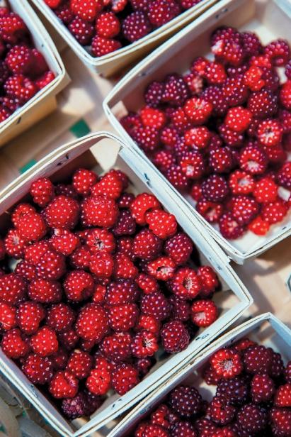 Berries grown at HomeFarm
