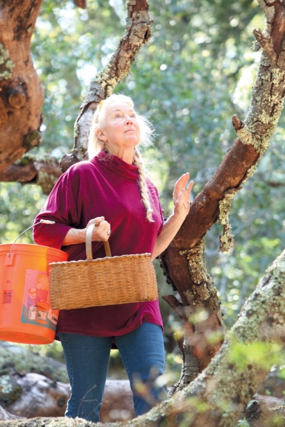 Connie Green, Wine Forest Wild Foods in California