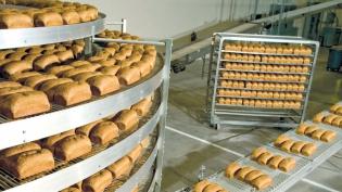 Alvarado Street Bakery bread loaves
